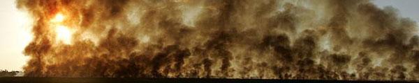 afbrænding af sukkerrørsmarker i Brasílien