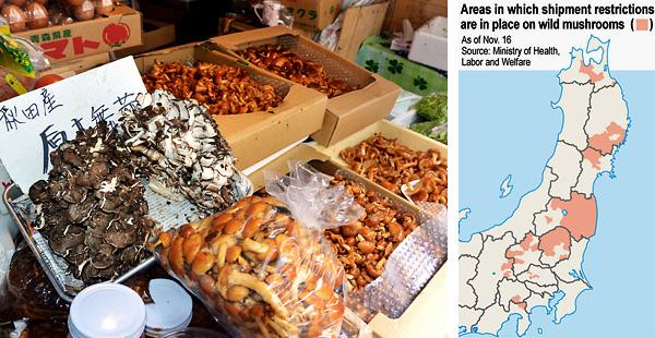 Højt strålingsniveau fundet i svampe fra Aomori Amt i det nordligste Tohuku
