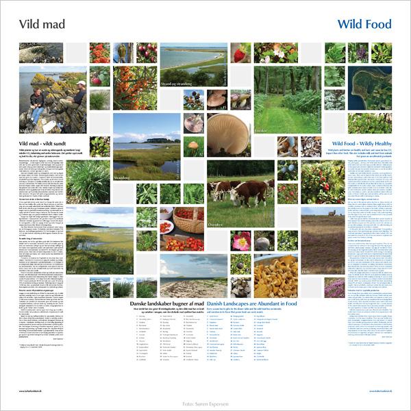 "Download planchen ""Vild mad"" 2,7 Mb pdf"