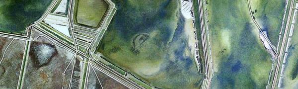 udsnit af Google luftfoto af Veta la Palma