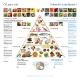 CO2 pyramide